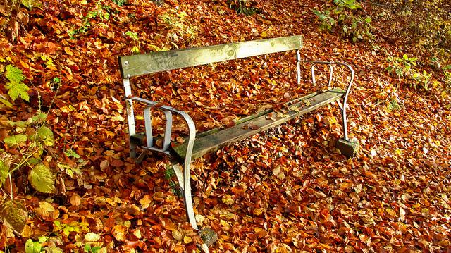 Petit exercice de la semaine : méditation d'automne